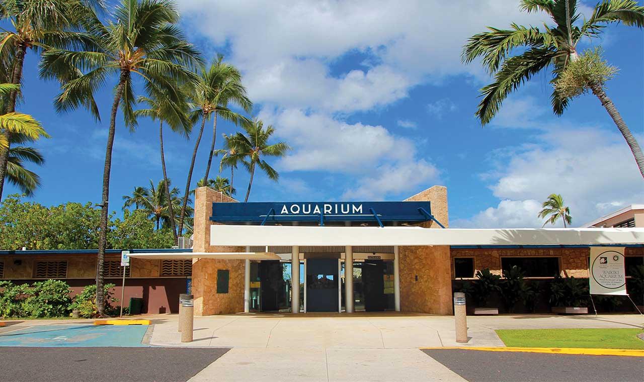 親子で楽しめる!ハワイの魅力あふれるおすすめテーマパーク3選のアイキャッチ画像